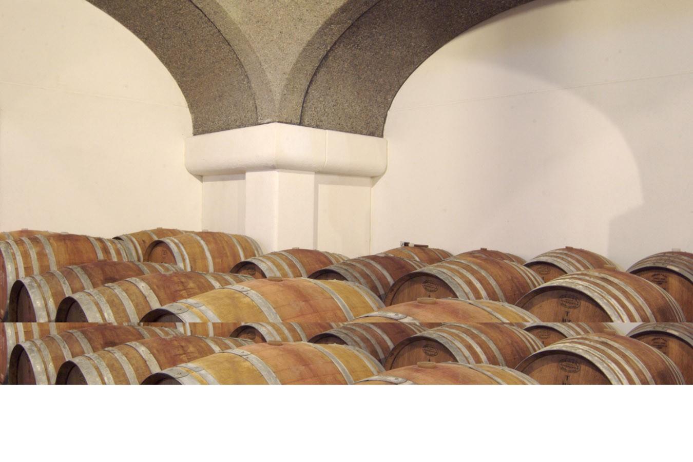 Azienda Vinicola Platter Cavriana53