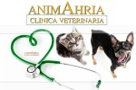 Clinica Veterinaria Animahria Calcinato